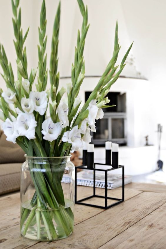 Usher in more luck with gladiola, dubbed the flower of the year.